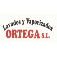 Lavados y vaporizados Ortega
